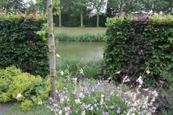 Landelijke tuin bij vrijstaande woning in Enkhuizen