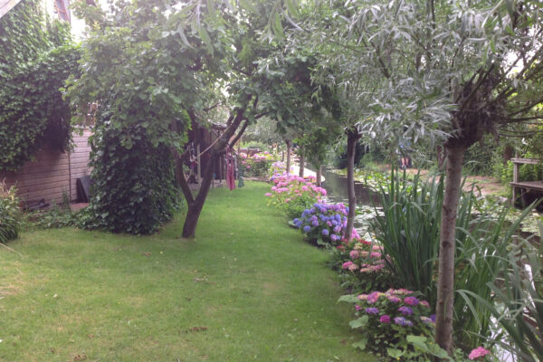 Landelijke Tuin met Ronde Vormen Koedijk