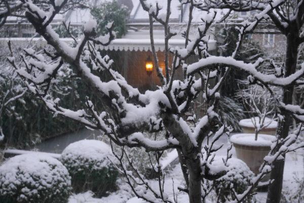 Romantische tuin Heemskerk