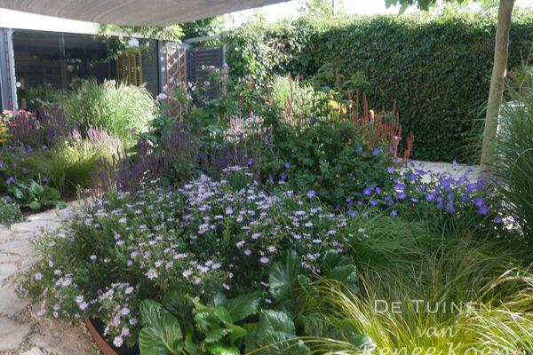 De-Tuinen-van-Renee-Koen-beplantingsplan-kleurige-border-tuin-heerhugowaard