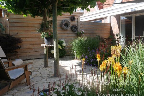 De-Tuinen-van-Renee-Koen-kleine-achtertuin-Heerhugowaard-dakplatanen-kniphofia-klein-zitje