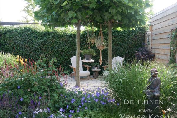 De-Tuinen-van-Renee-Koen-tuinontwerp-kleine-achtertuin-zitje-dakplatanen