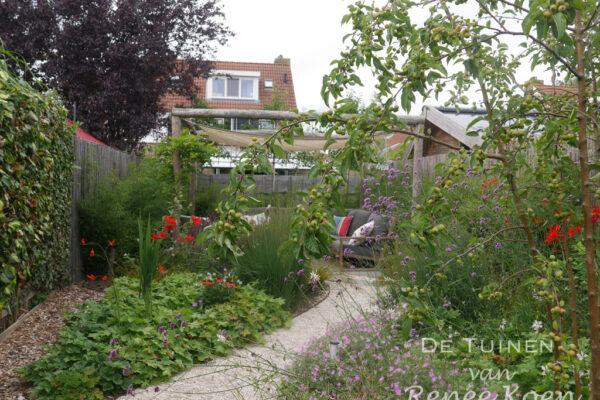 De-Tuinen-van-Renee-Koen-achtertuin-Stompetoren-met-Sierappel-en-terras-met-pergola