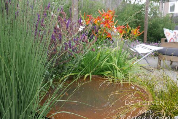 De-Tuinen-van-Renee-Koen-waterschaal-cortenstaal-en-molinia-'Heidebraut'